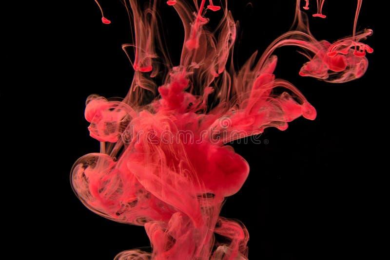 Chute acrylique d'encre rouge dans l'eau, fond abstrait images libres de droits
