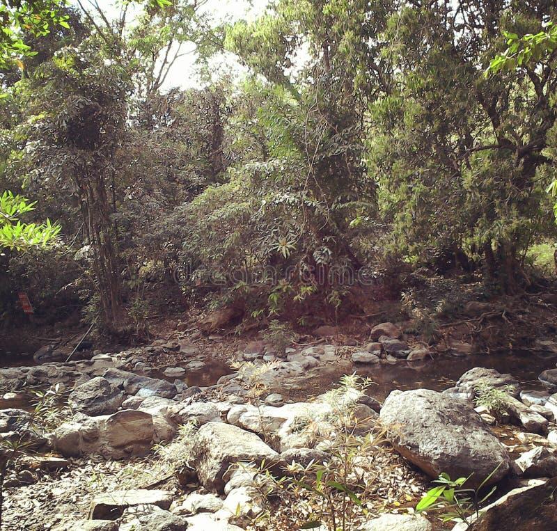 Chute de l'eau, aucune eau photographie stock libre de droits