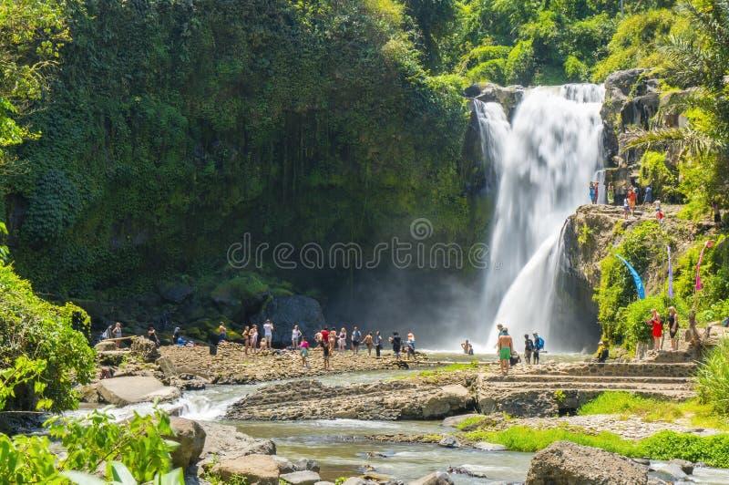 Chute de l'eau de Tegenungan photo stock