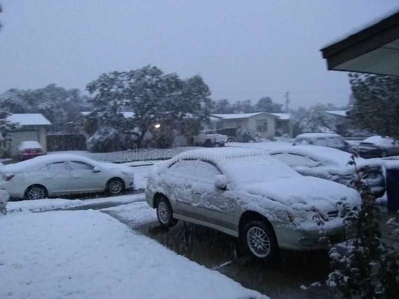 Chute de neige dans le tx de Corpus Christi photo stock
