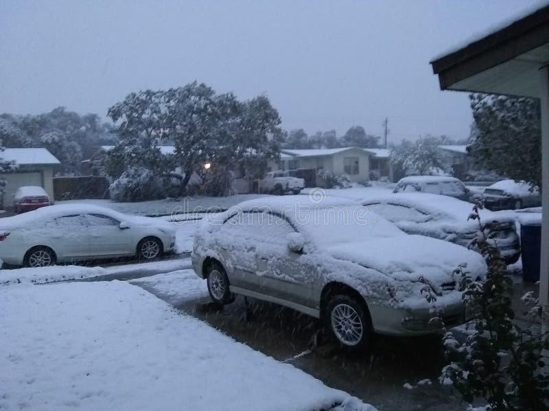 Chute de neige dans le tx de Corpus Christi photo libre de droits