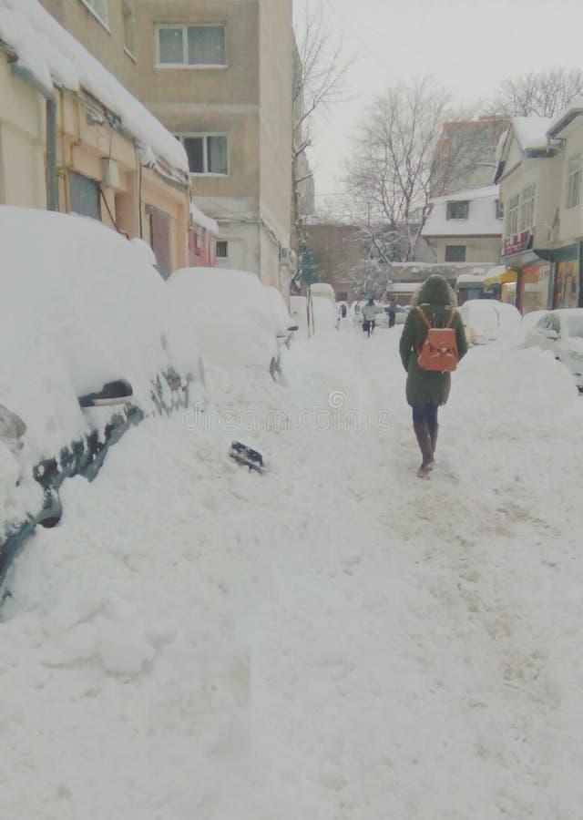 Chute de neige importante d'extrémité de la Roumanie photographie stock