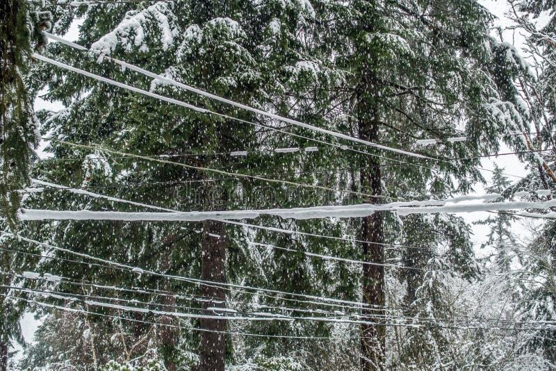 Chute de neige sur des lignes électriques image stock