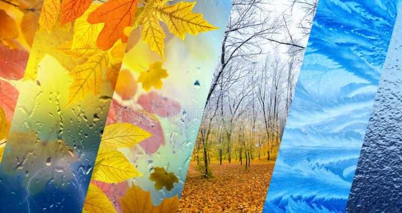 Chute et hiver, concept de prévisions météorologiques images stock