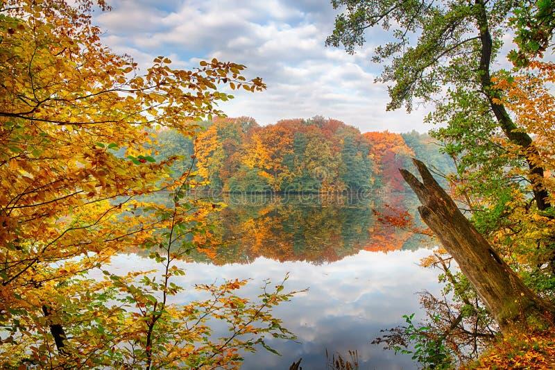 Chute sur le lac photographie stock
