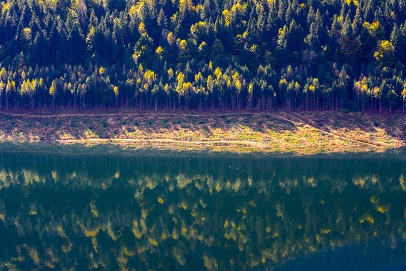 Download Chute sur le miroir de lac photo stock. Image du miroir - 45354412