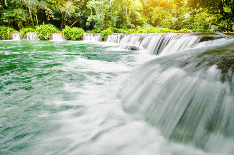 Chutes de cascade tropicales de forêt tropicale photographie stock libre de droits