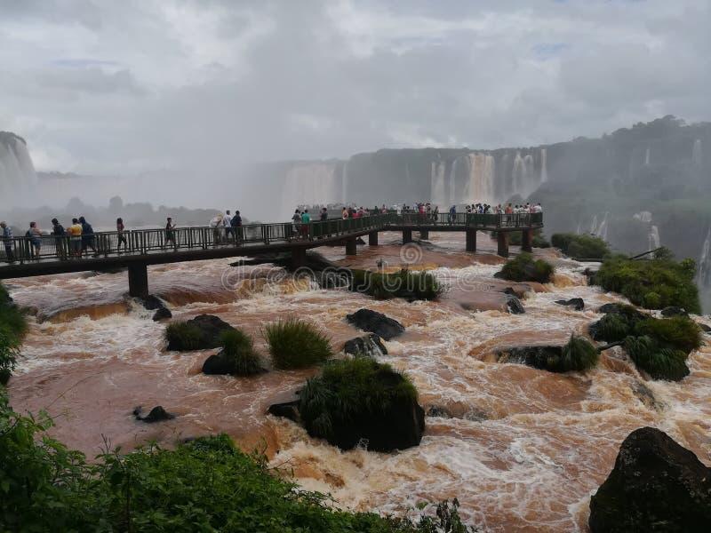 Chutes de Foz DA Iguazú photo stock