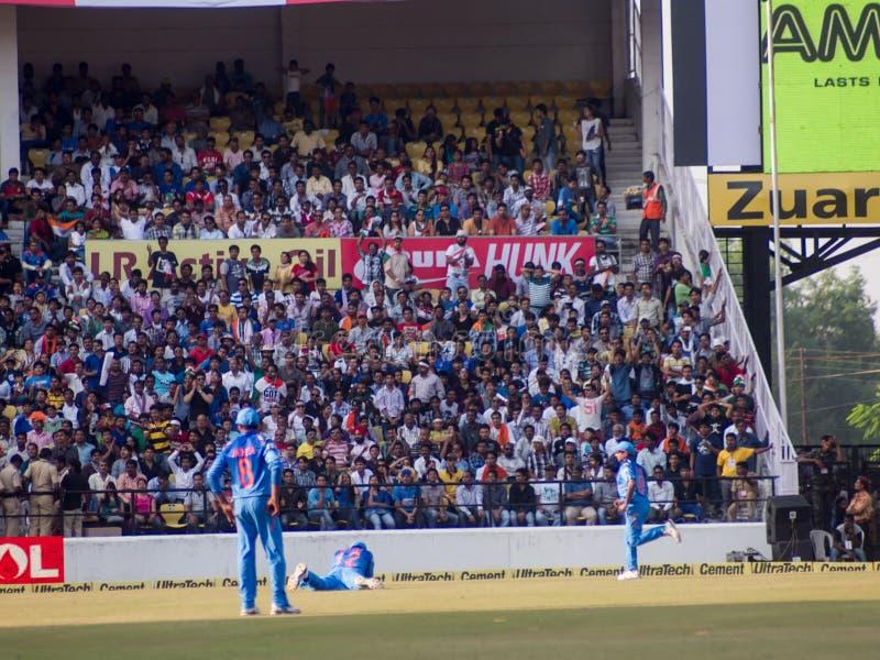 Chutes de joueur de terrain de cricket photographie stock libre de droits