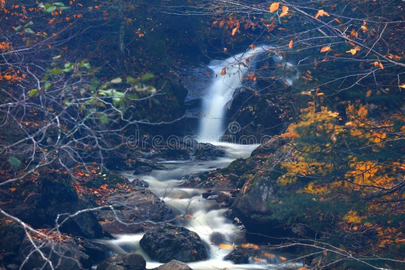 Chutes de l'eau au Québec rural dans le temps d'automne images stock
