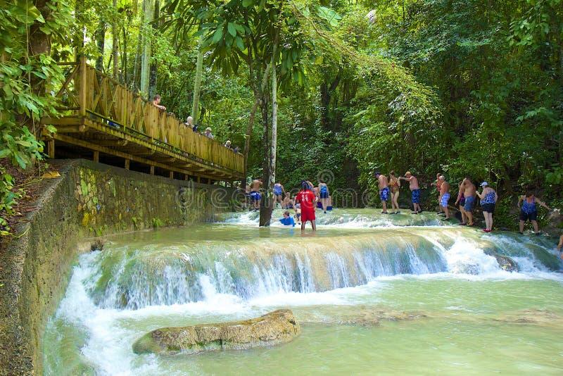 Chutes de la rivière de Dunn, Jamaïque, des Caraïbes photos libres de droits