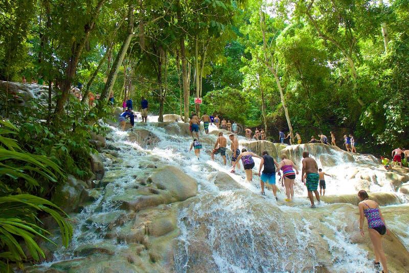 Chutes de la rivière de Dunn, Jamaïque, des Caraïbes image libre de droits