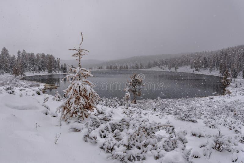 Chutes de neige d'automne de montagnes de neige de lac photos libres de droits