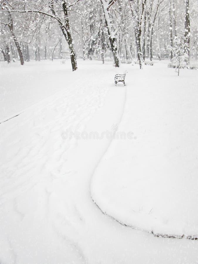 Chutes de neige en stationnement image libre de droits