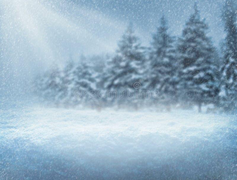 Chutes de neige pendant la nuit de Noël de forêt Fond d'an neuf illustration libre de droits
