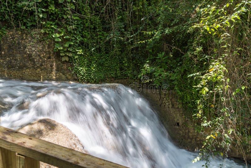 Chutes Jamaïque les Antilles de rivière de Dunn photo libre de droits