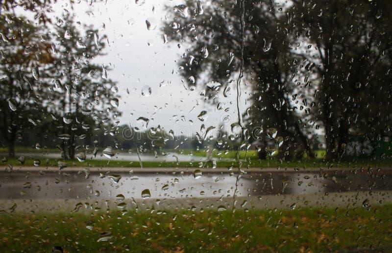 A chuva cai no vidro de janela Fundo fotografia de stock royalty free