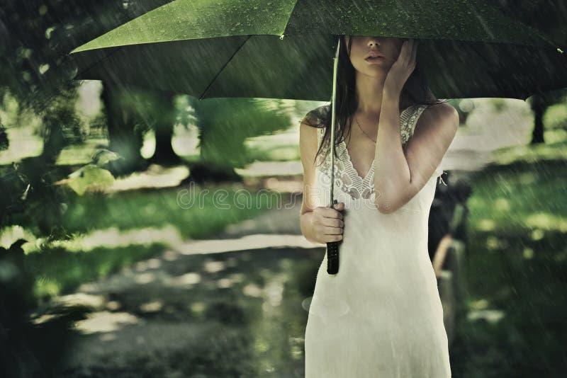Chuva do verão fotografia de stock