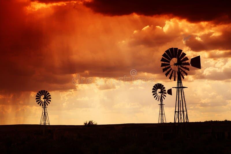 Chuva no deserto no por do sol fotografia de stock