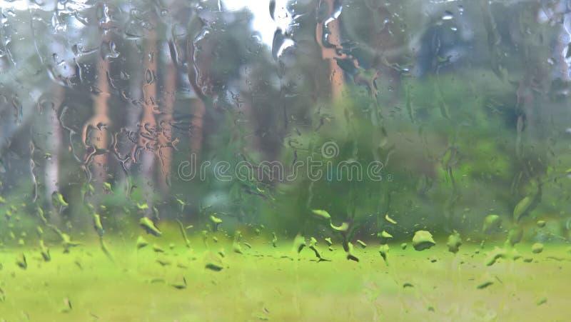 Chuva no vidro ilustração stock