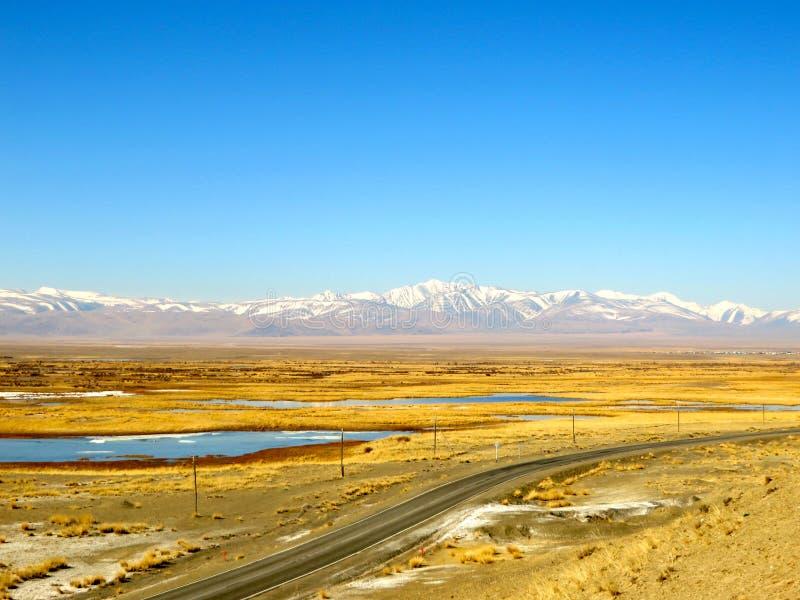 Chuysky Tract - the road to Mongolia stock photos