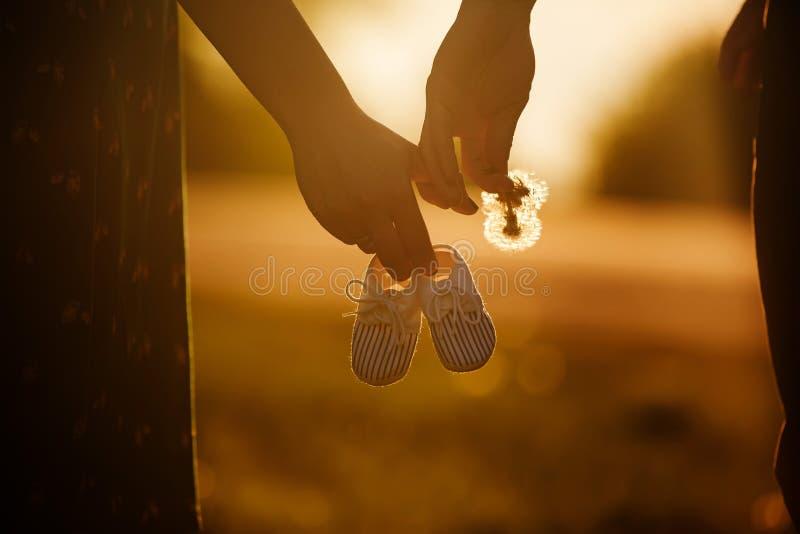 Chwyt ręki Przyszłościowa rodzina młoda rodzina czeka uzupełniającym matka trzyma dziecko buty, tata trzyma dandelion obrazy stock
