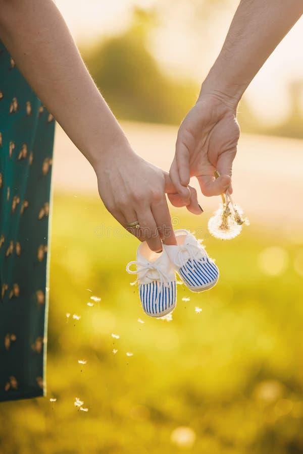Chwyt ręki Przyszłościowa rodzina młoda rodzina czeka uzupełniającym matka trzyma dziecko buty, tata trzyma dandelion fotografia royalty free