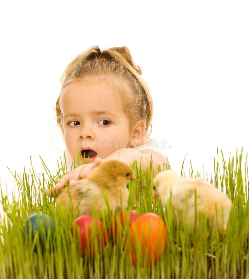 chwytająca kurczątek Easter dziewczyna trochę fotografia royalty free