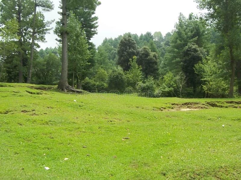 Chwytliwa naturalna scena Sudhnoti Kaszmir obrazy royalty free
