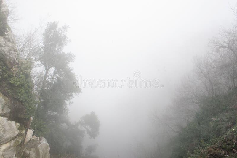 Ciężka mgła w górach obrazy stock