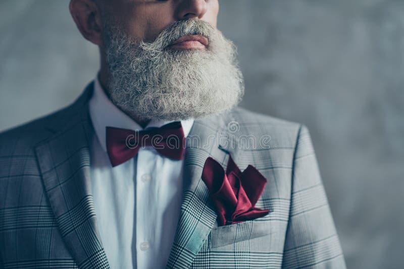 Ciérrese encima de la foto cosechada de la riqueza de moda agudo-vestida elegancia de la élite imagen de archivo