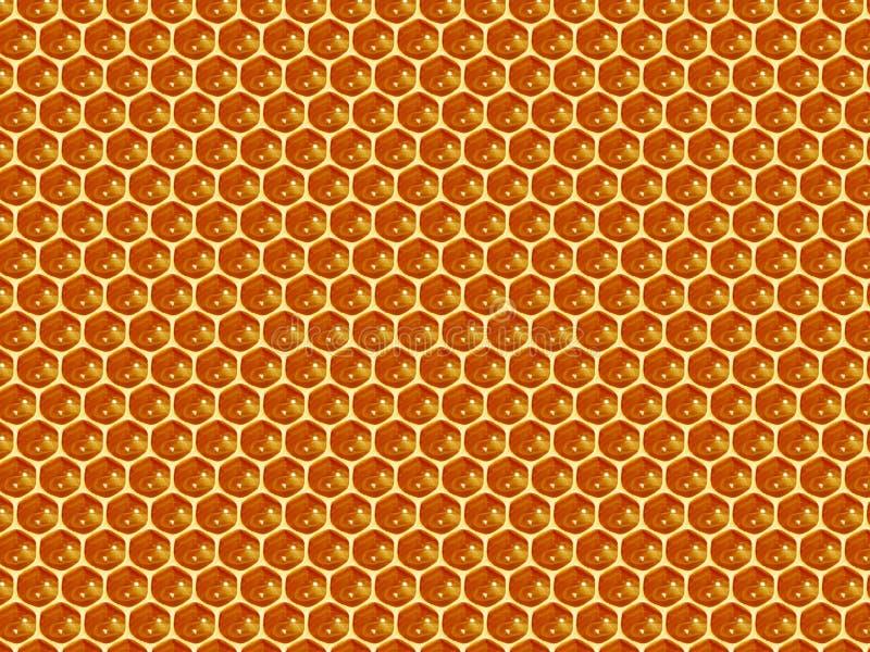Ciérrese encima de la opinión las abejas de trabajo en las células de la miel foto de archivo libre de regalías