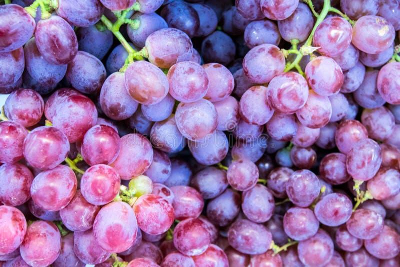 Ciérrese encima de la uva roja en el estante en mercado fresco frutas sanas para el oxidante anti fotografía de archivo
