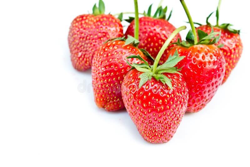 Ciérrese encima de las fresas foto de archivo libre de regalías