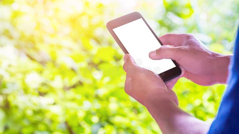 Ciérrese encima de las manos masculinas que sostienen la pantalla blanca del teléfono con el fondo borroso verde foto de archivo libre de regalías