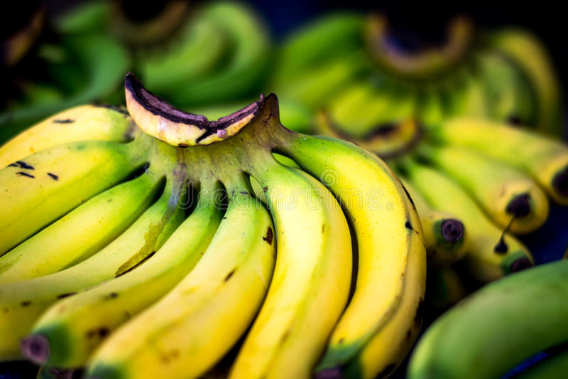 Ciérrese encima de los plátanos casi maduros frescos fotografía de archivo libre de regalías