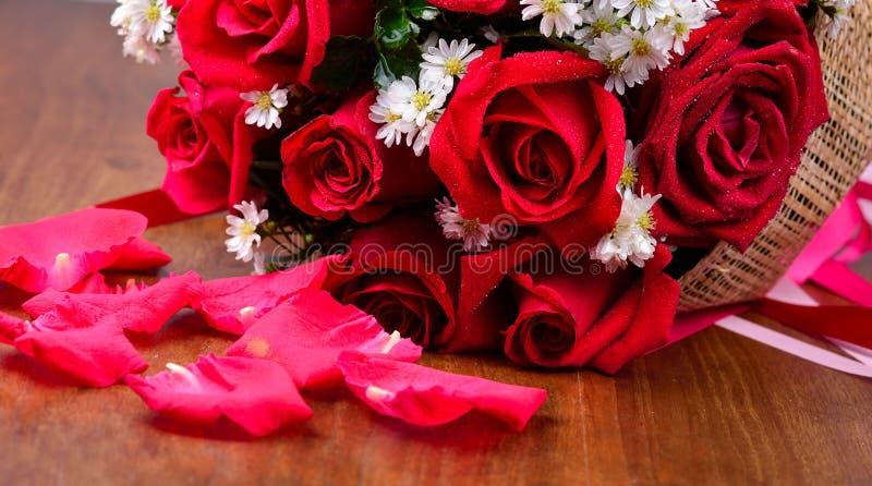 Ciérrese encima de macro de una rosa roja foto de archivo