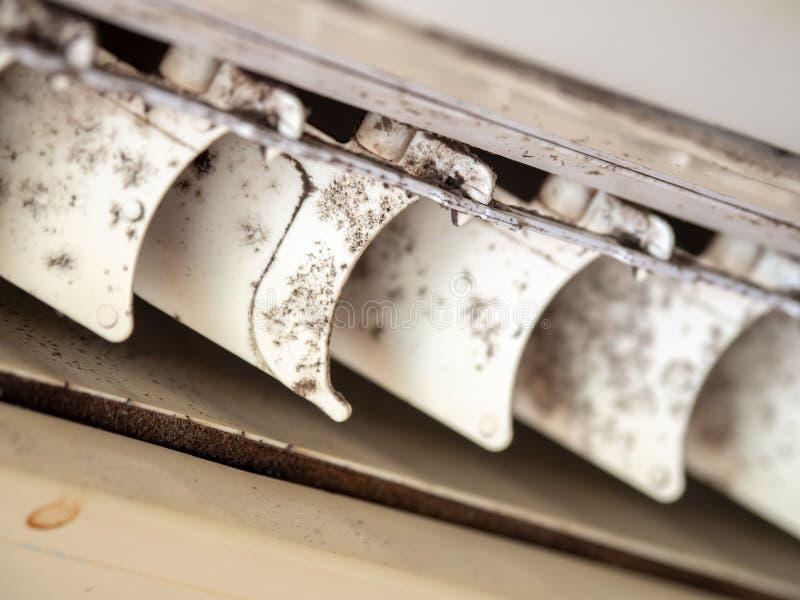 Ciérrese encima de molde en sistema del acondicionador de aire Peligro y la causa de la pulmonía y de las enfermedades respirator foto de archivo libre de regalías