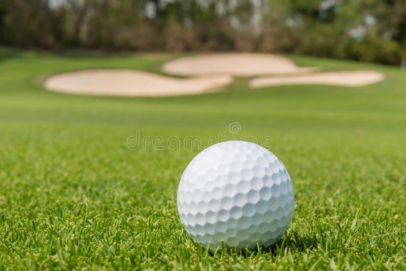 Ciérrese encima de pelota de golf en hierba con el backgr verde borroso del curso foto de archivo
