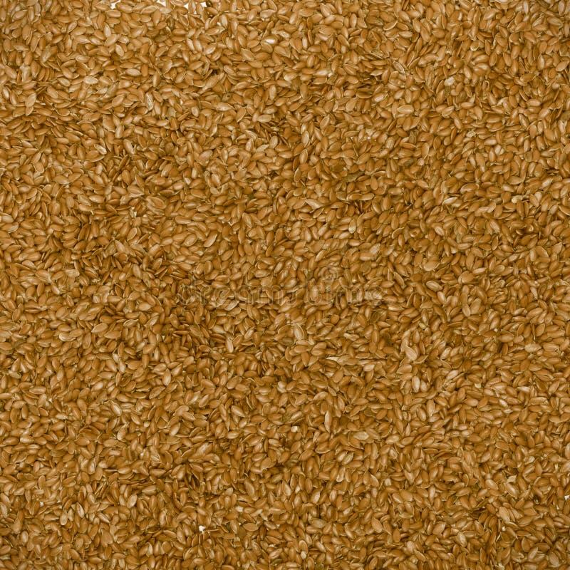 Ciérrese encima de textura del fondo de la comida del marrón de la linaza de la linaza fotografía de archivo