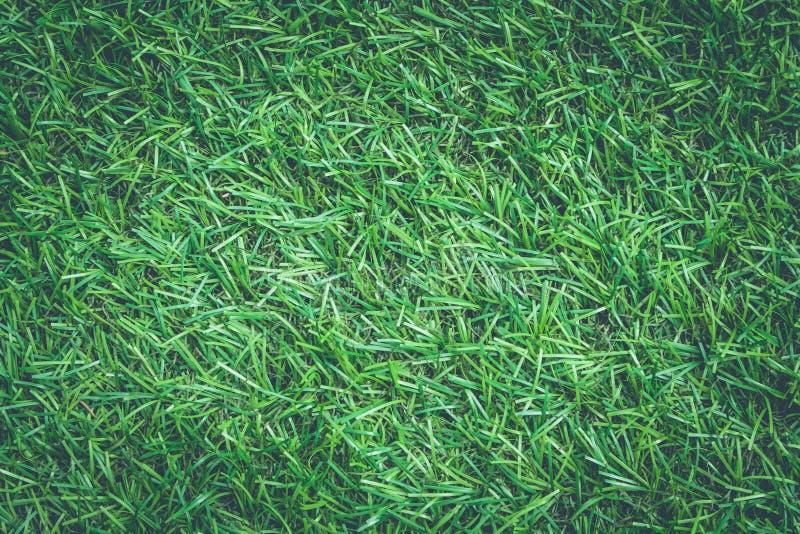 Ciérrese encima de textura de la hierba artificial o de la hierba verde en estilo del vintage foto de archivo