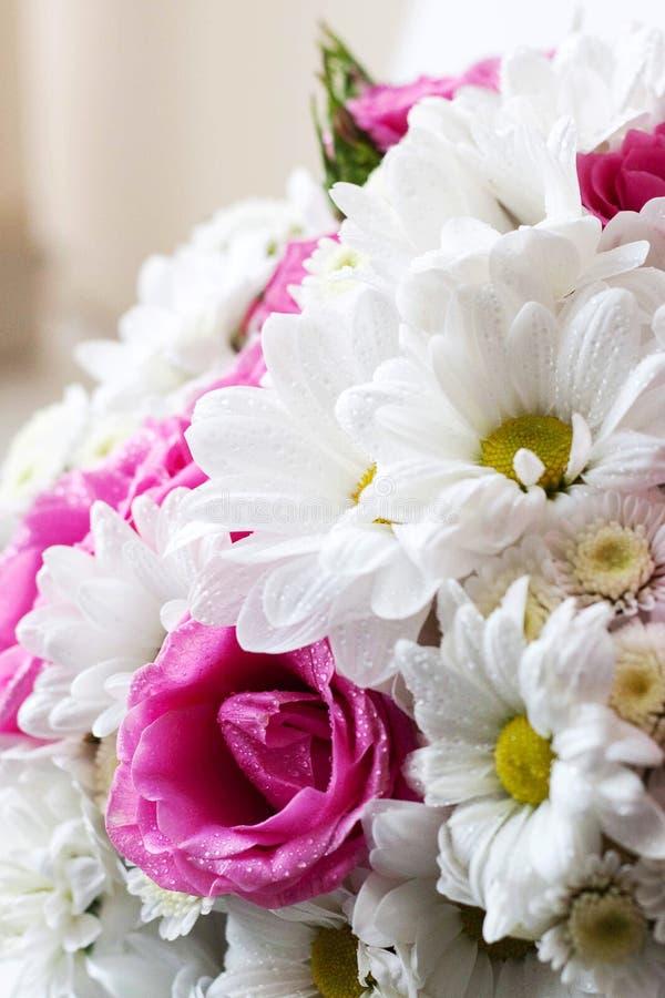 Ciérrese encima de un ramo modesto de manzanillas y rosas rosadas, un regalo a una mujer, primavera y verano foto de archivo