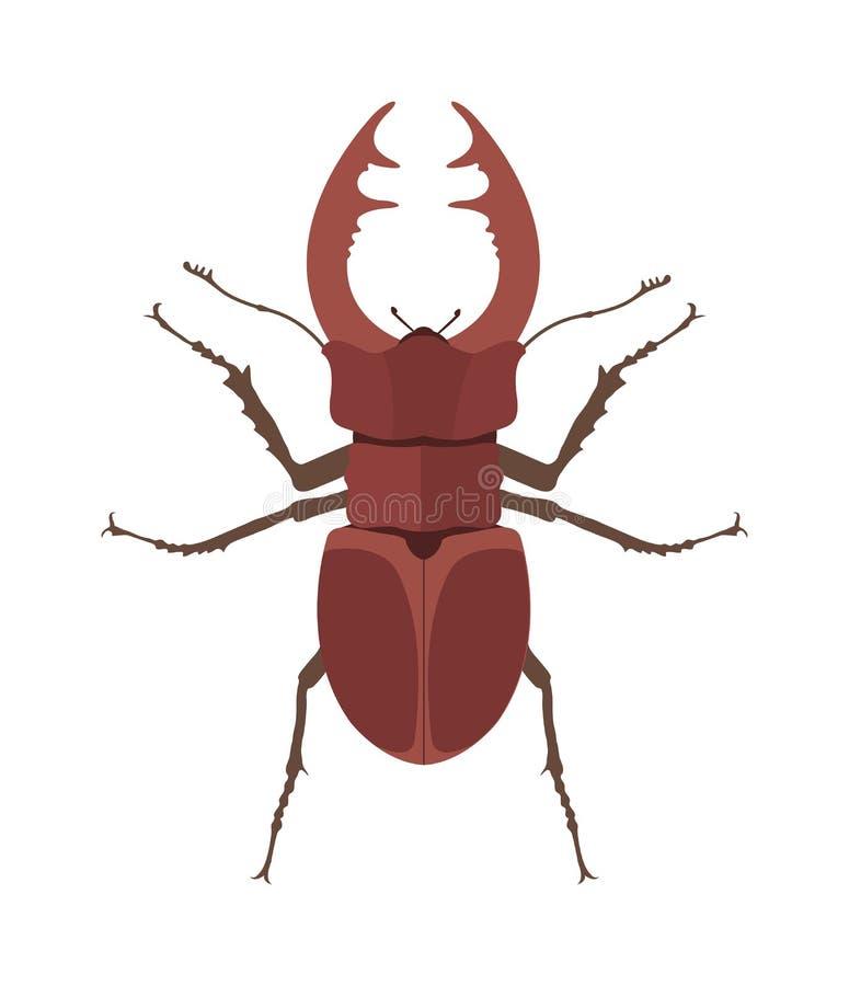 Ciérrese encima del ejemplo de cuernos marrón del vector de la historieta del escarabajo Insecto del insecto del rinoceronte stock de ilustración