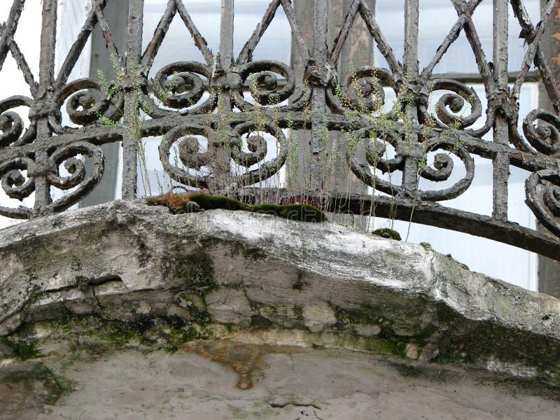 Ciérrese encima del fragmento de la rejilla balkony del vintage ornamental del hierro fotografía de archivo
