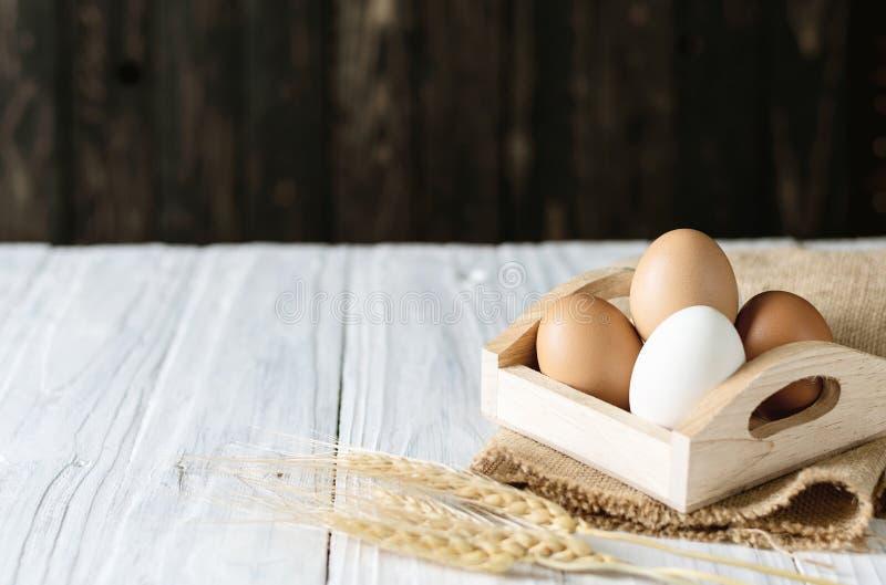 Ciérrese encima del huevo blanco, copie el espacio foto de archivo libre de regalías