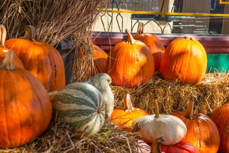 Ciérrese para arriba de Autumn Pumpkin Display con Straw Bales foto de archivo