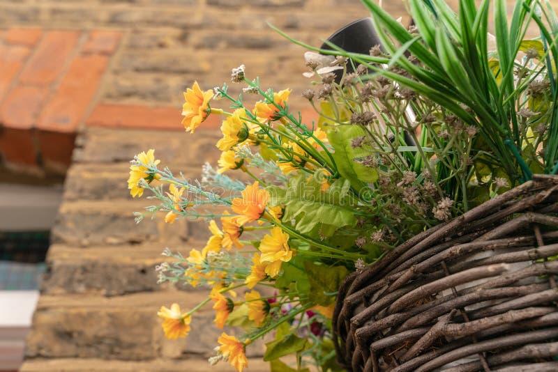 Ciérrese para arriba de cesta de la flor de la ejecución de la calle en la pared de la casa de ciudad imagen de archivo libre de regalías