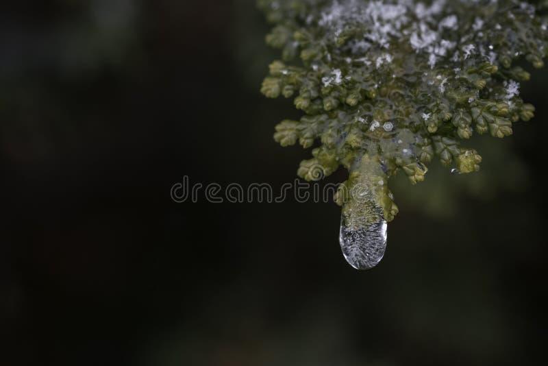 Ciérrese para arriba de descenso cristalino del hielo con las burbujas de aire dentro imágenes de archivo libres de regalías