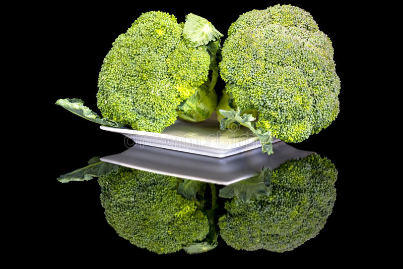 Ciérrese para arriba de dos jefes de bróculi fotos de archivo libres de regalías