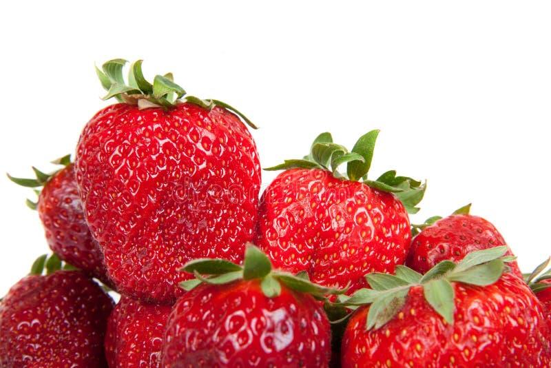 Ciérrese para arriba de fresas frescas, aislado imágenes de archivo libres de regalías
